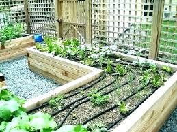 diy garden watering systems garden watering systems flower building garden watering system diy vegetable garden irrigation