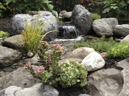 parrot feather water garden plants for new pond construction by pond contractor acorn ponds waterfalls