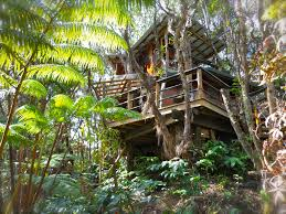 Exotic Tree Houses 5 Vacation Rental Treehouses Tourist Choice