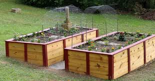 Small Picture Lowes Raised Garden Bed Gardening Ideas