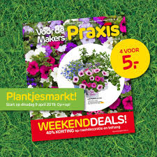 Praxis Amsterdam Westerpark Home Facebook