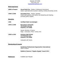 Resume Work Resume Sample Job Resume Template Malaysia Resume