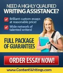 Get help from professional essay writers