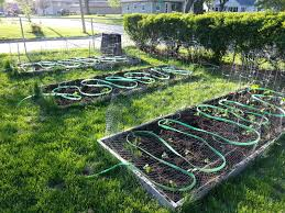 garden irrigation systems. Interesting Irrigation The Problem Was With Water Pressure I Had A Fleet Of Rain Barrels That Are  Full From The Spring Rains But Not Enough Gravitational Pressure To Push  With Garden Irrigation Systems I