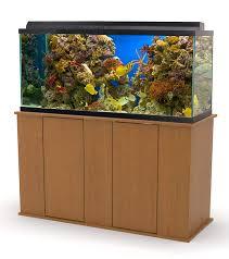 Best Aquarium Stand Design Aquatic Fundamentals Aquarium Stand With Storage