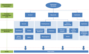 Pharmaceutical Company Organizational Chart 50 Studious Distributor Organizational Chart