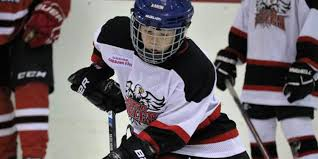 lessons i learn from hockey essay contest winner announced finalist essays