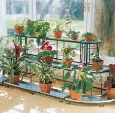 indoor gardening. Indoor Gardening. How To Grow Beautiful Plants Inside Your Home Gardening