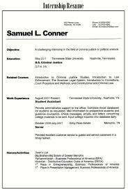 100 Best Resume Summary Statement Examples 68 Resume