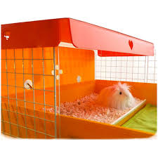 c c cages for guinea pigs