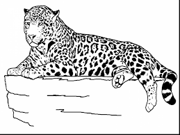 Small Picture great realistic animal coloring pages with jungle animals coloring