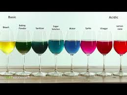 Red Cabbage Juice Indicator Chart Red Cabbage Indicator Colors Chemistry Experiment For Kids To Do At Home