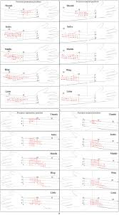 Motor Points For Electrical Stimulation Chart The Positions Of Stimulation Points For Extension And