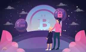 Casa is the leading provider of bitcoin self custody solutions. Everything You Should Know About Casa Security For Bitcoins