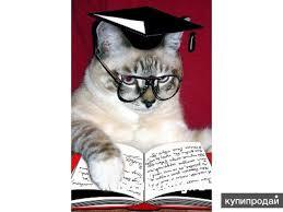 Купить курсовую по психологии в Туле Заказать контрольную работу  Написание докторской диссертации в Стерлитамаке
