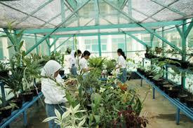 Keberadaan green house di sekolah digunakan sebagai sarana pembelajaran  khususnya bagi pelajaran biologi untuk belajar langsung praktikum dan  mengajak