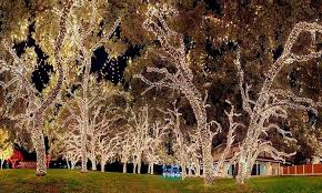 17 meter string of 100 led solar powered fairy lights 1 or
