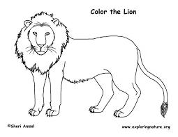 Small Picture Coloring Page Lion Free Download