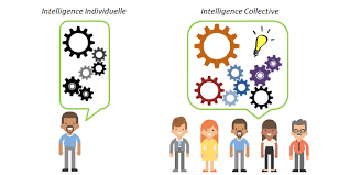 L'intelligence collective • Le site éco