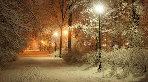 Snow Light Landscape Portrait Snow And Street Lights 984826 Hd