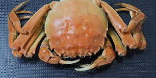 Live Crab Vending Machine Cool Petition Demand China Get Rid Of Live Crab Vending Machines