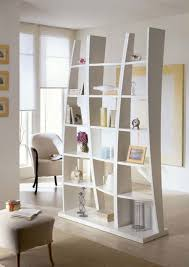 Beautiful Bookcase Room Dividers
