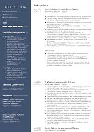Solutions Architect Resume Samples Templates Visualcv