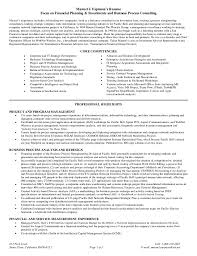 Business Process Consultant Resume