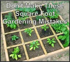 Small Picture Dont Make These Square Foot Gardening Mistakes Many new
