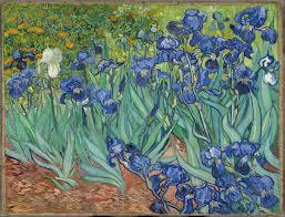 irises vincent van gogh 1889
