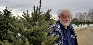 Image result for tree farmers