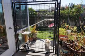 i designed and built my dream catio and you can too