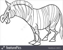 cartoon zebra for coloring book