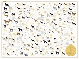 A Chart Of Dogs Dog Breed Poster The Diagram Of Dogs 24 X 18 By Pop Chart Lab