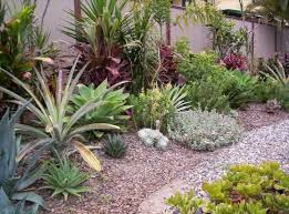 Small Picture The 25 best Australian garden design ideas on Pinterest Modern