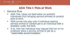 Comfort Pets, Scent-Free Zones & Interpreters - ppt download
