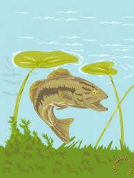 largemouth bass fish swimming underwater painting collection 10 largemouth bass fish swimming underwater art print