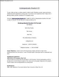 good german cv resume builder good german cv how to write a good cv europa pages student cv sample format sample