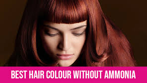 Nice And Easy Hair Colour Chart South Africa Best Hair Colour Without Ammonia Does It Really Work