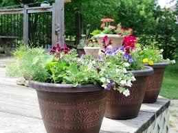 Large Indoor Flower Pots Ideas