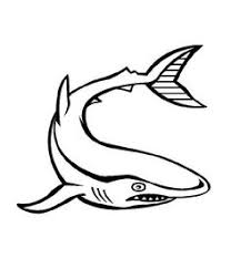 Small Picture Shark Jaws Coloring Page Shark Coloring Pages Pinterest
