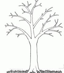 Small Picture Big Tree Without Leaves Coloring Page Tree Pinterest Coloring