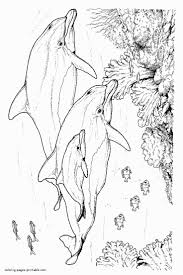 95 best Color: Fish and Such images on Pinterest | Coloring pages ...