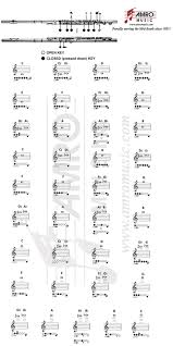 Piccolo Flute Finger Chart Notes And Fingerings The Flute