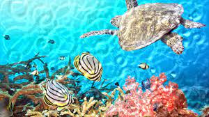Watery Desktop 3D Animated Wallpaper ...