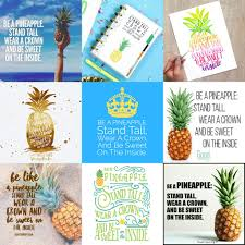 Who Created The Be A Pineapple Quote The Salty Pineapple Shop