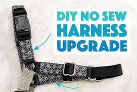 Dog Harness Pattern Amazing DIY No Sew Dog Harness Upgrade The Broke Dog