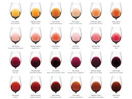 wine aging chart complete wine color chart download wine folly