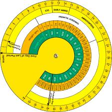 Pregnancy Calendar And Pregnancy Calculator Womens Health Clinic