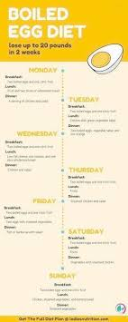 Diet Chart For Female For Weight Loss 68 Up To Date Weight Loss Diet Chart For Female